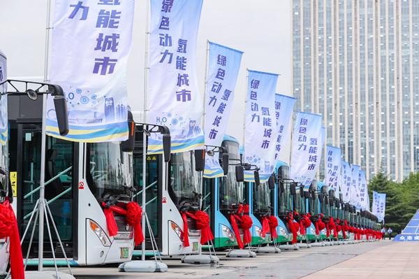 氢动未来,又一批中通氢燃料客车交付潍坊!
